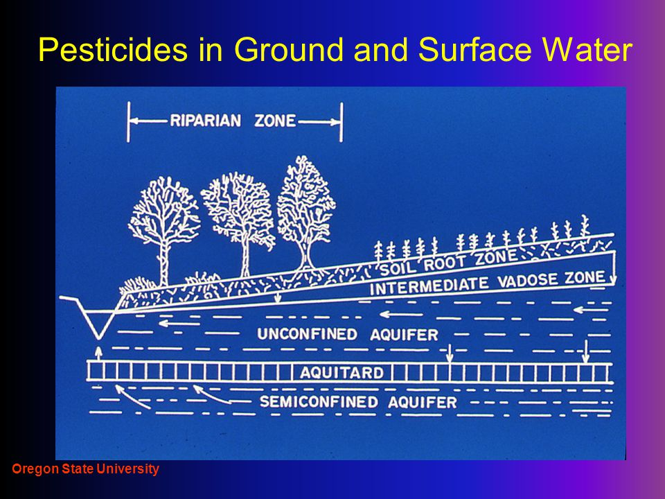 Oregon State University Pesticides in Ground and Surface Water