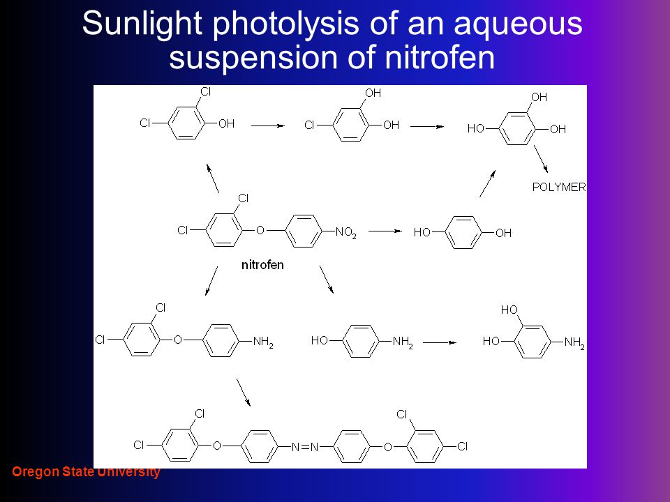 Oregon State University Sunlight photolysis of an aqueous suspension of nitrofen