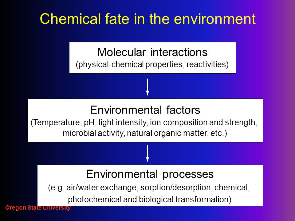 Chemical fate in the environment Molecular interactions (physical-chemical properties, reactivities) Environmental factors (Temperature, pH, light intensity, ion composition and strength, microbial activity, natural organic matter, etc.) Environmental processes (e.g.