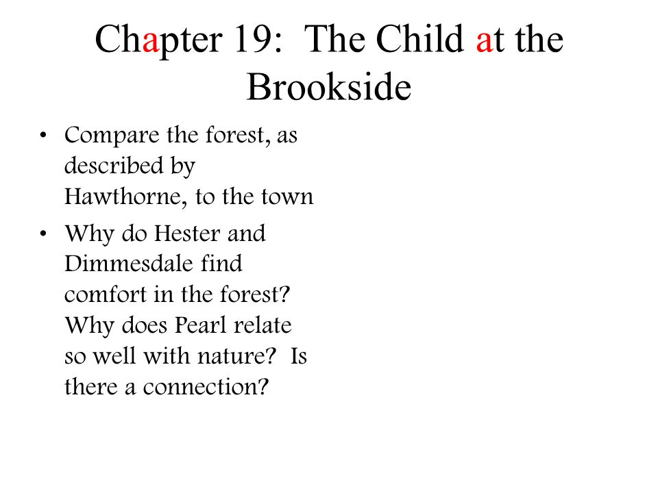 Chapter 20: The Minister in a Maze Hester and Dimmesdale decide to leave in four days' time—after the Election Sermon Dimmesdale is happy that he can leave his office after the Election Sermon Hester has booked passage to Bristol for herself and two others; the captain has allowed her to board for her good works with the Sisters of Charity Dimmesdale feels a heavy burden lifted from his soul—and he begins to think of many sinful thoughts.