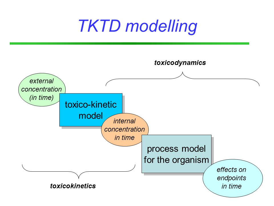 external concentration (in time) toxico-kinetic model toxico-kinetic model TKTD modelling internal concentration in time process model for the organism process model for the organism effects on endpoints in time toxicokinetics toxicodynamics