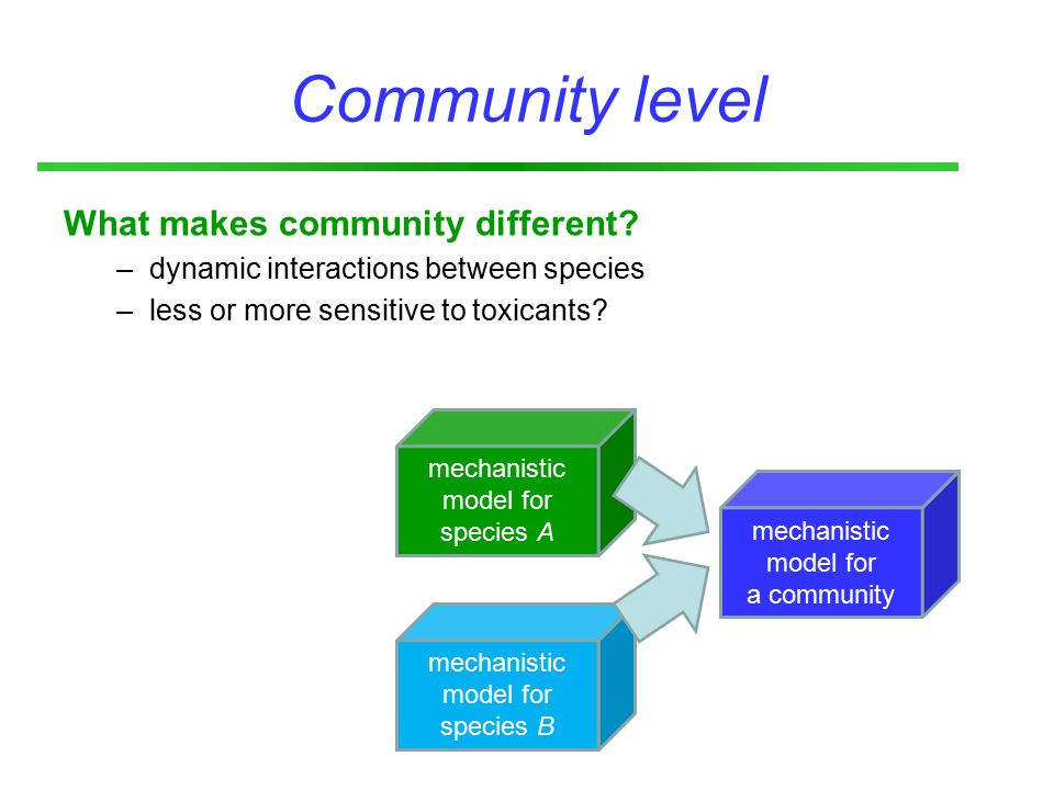 Community level What makes community different.