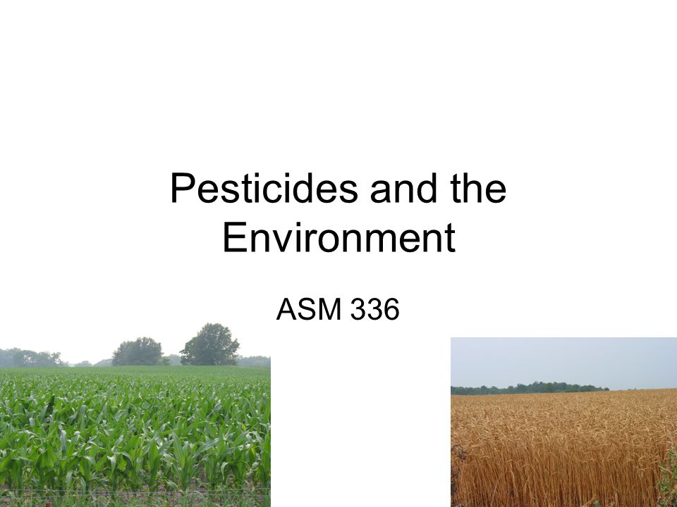 Pesticides Goal: to stop or limit pest occurrence Types: –Insecticides – kill insects –Herbicides – kill weeds –Fungicides – suppress or kill fungi