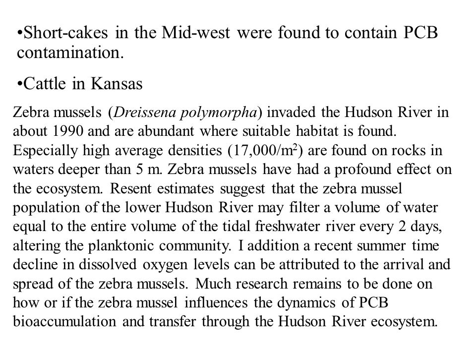 Short-cakes in the Mid-west were found to contain PCB contamination. Cattle in Kansas Zebra mussels (Dreissena polymorpha) invaded the Hudson River in