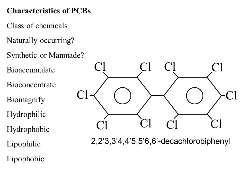 Characteristics of PCBs Class of chemicals Naturally occurring? Synthetic or Manmade? Bioaccumulate Bioconcentrate Biomagnify Hydrophilic Hydrophobic