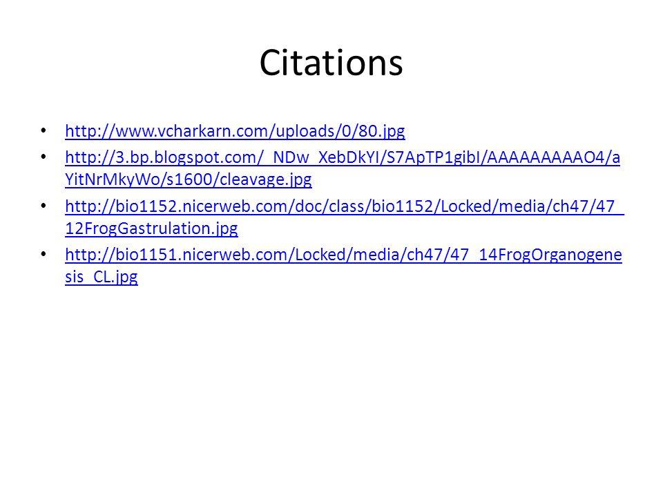 Citations http://www.vcharkarn.com/uploads/0/80.jpg http://3.bp.blogspot.com/_NDw_XebDkYI/S7ApTP1gibI/AAAAAAAAAO4/a YitNrMkyWo/s1600/cleavage.jpg http