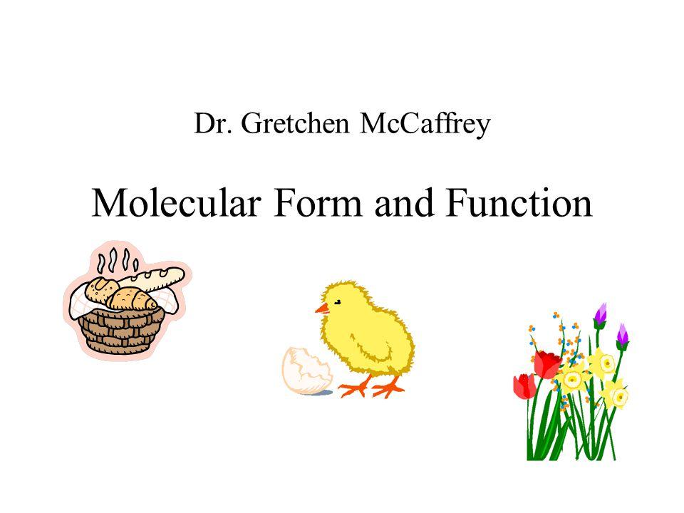 Dr. Gretchen McCaffrey Molecular Form and Function