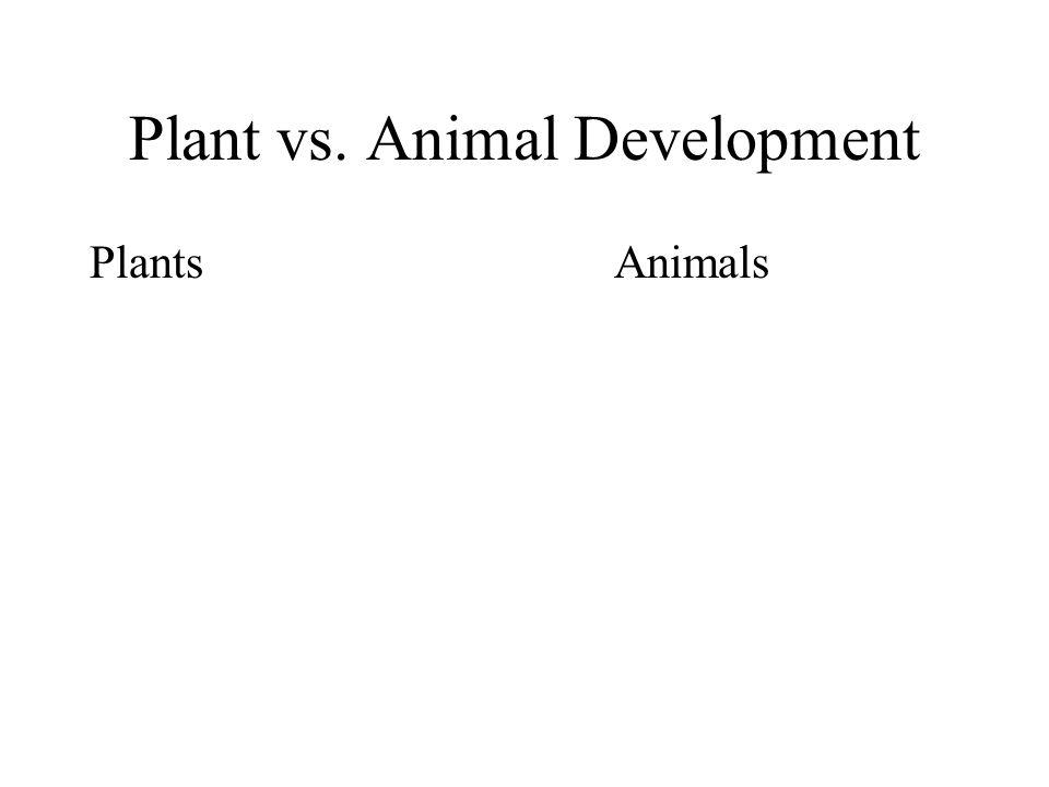 Plant vs. Animal Development PlantsAnimals