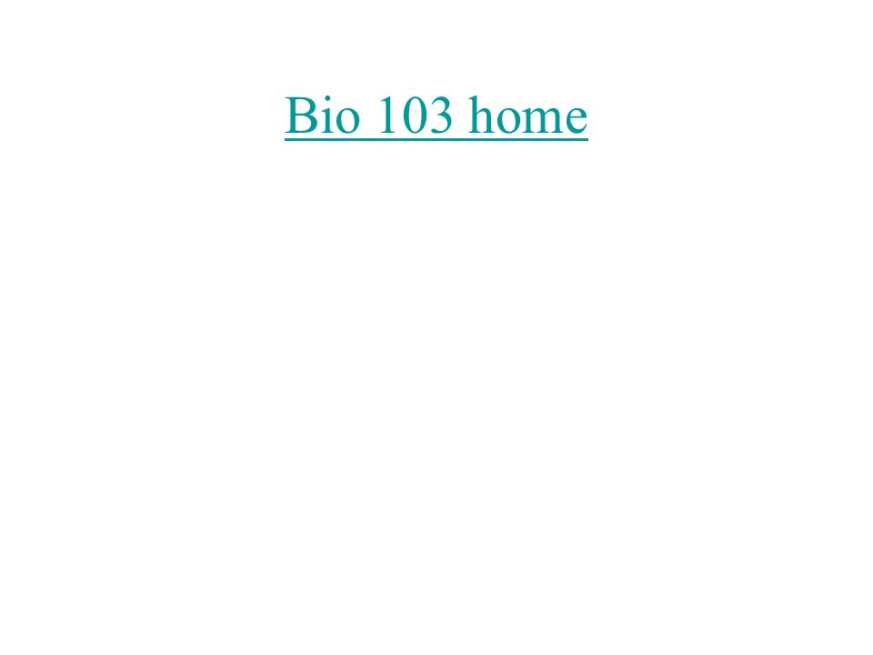 Bio 103 home