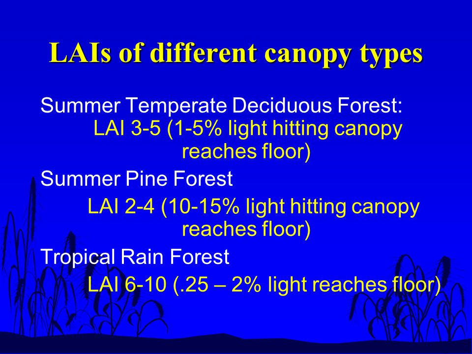 LAIs of different canopy types Summer Temperate Deciduous Forest: LAI 3-5 (1-5% light hitting canopy reaches floor) Summer Pine Forest LAI 2-4 (10-15% light hitting canopy reaches floor) Tropical Rain Forest LAI 6-10 (.25 – 2% light reaches floor)