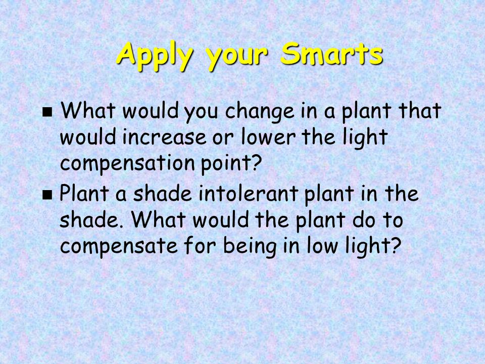 Apply your Smarts Apply your Smarts n What would you change in a plant that would increase or lower the light compensation point.