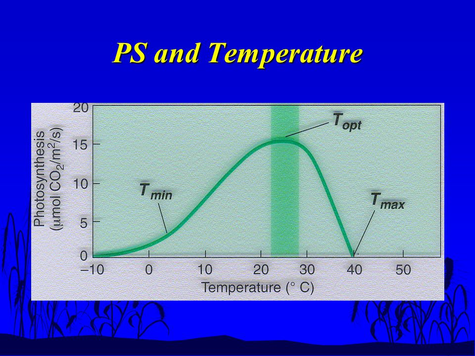 PS and Temperature