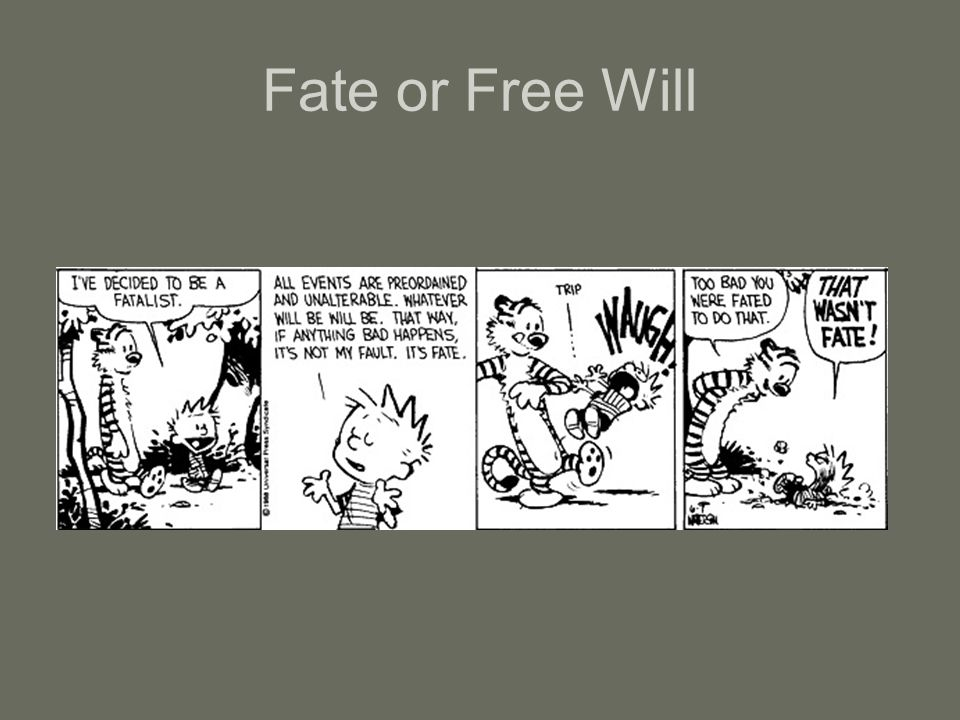 Fate or Free Will