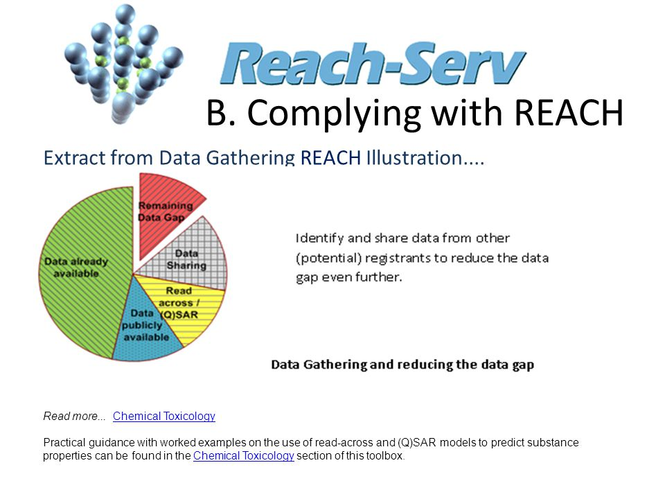 B. Complying with REACH Extract from Data Gathering REACH Illustration....