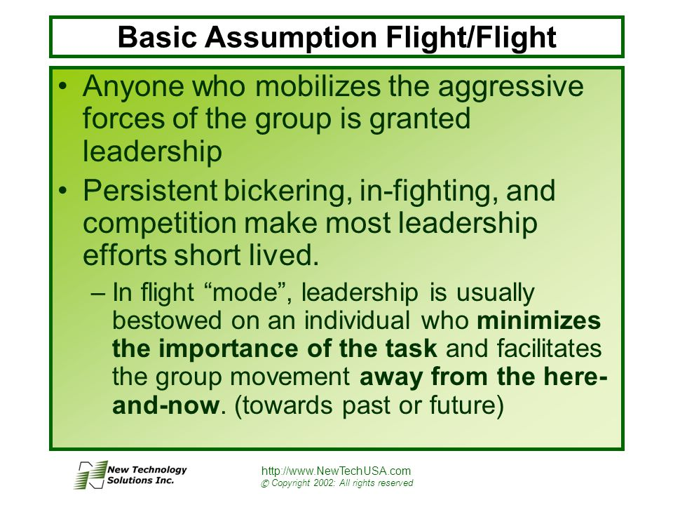 http://www.NewTechUSA.com © Copyright 2002: All rights reserved Basic Assumption Flight/Flight Anyone who mobilizes the aggressive forces of the group is granted leadership Persistent bickering, in-fighting, and competition make most leadership efforts short lived.