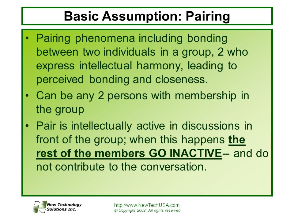 http://www.NewTechUSA.com © Copyright 2002: All rights reserved Basic Assumption: Pairing Pairing phenomena including bonding between two individuals in a group, 2 who express intellectual harmony, leading to perceived bonding and closeness.