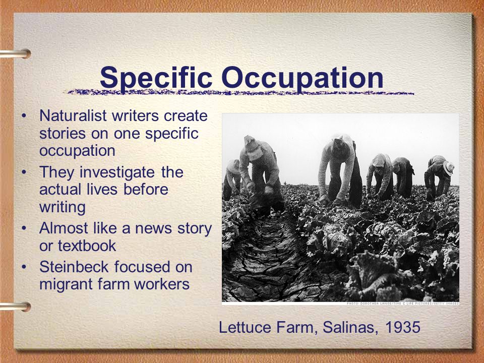Specific Occupation Naturalist writers create stories on one specific occupation They investigate the actual lives before writing Almost like a news story or textbook Steinbeck focused on migrant farm workers Lettuce Farm, Salinas, 1935