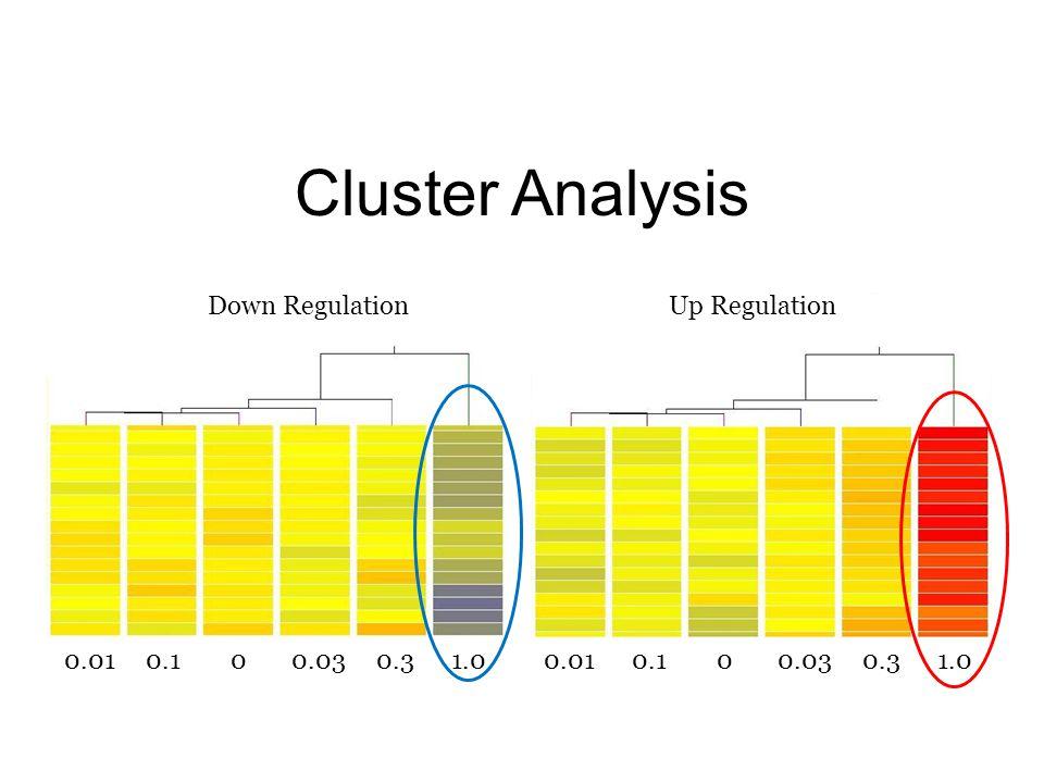 Cluster Analysis 0.01 0.1 0 0.03 0.3 1.0 Down RegulationUp Regulation