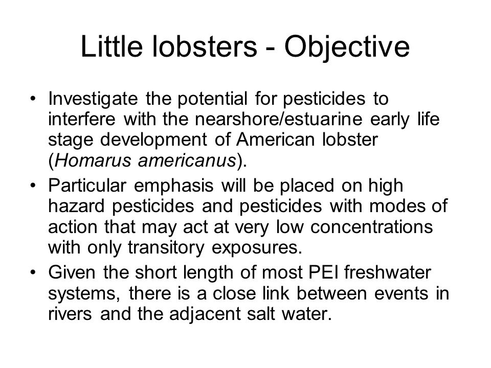 Little lobsters - Objective Investigate the potential for pesticides to interfere with the nearshore/estuarine early life stage development of American lobster (Homarus americanus).