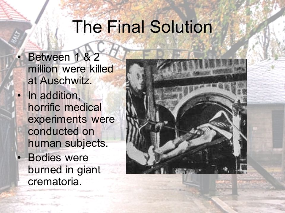 The Final Solution Adolf Eichmann reported to Hitler in the summer of 1944 that about 4 million Jews had been killed in the camps and another 2 million eliminated by Einsatzgruppen in Russia.