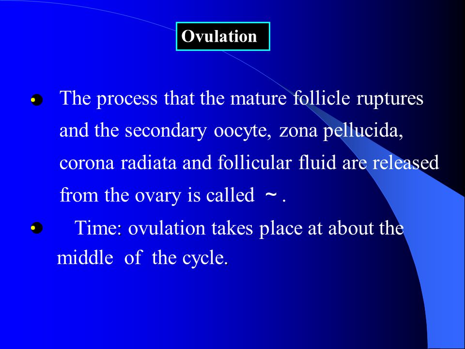 The process that the mature follicle ruptures and the secondary oocyte, zona pellucida, corona radiata and follicular fluid are released from the ovary is called ~.