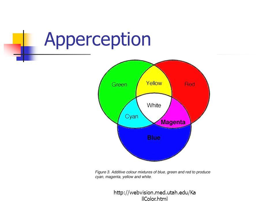http://webvision.med.utah.edu/Ka llColor.html Apperception