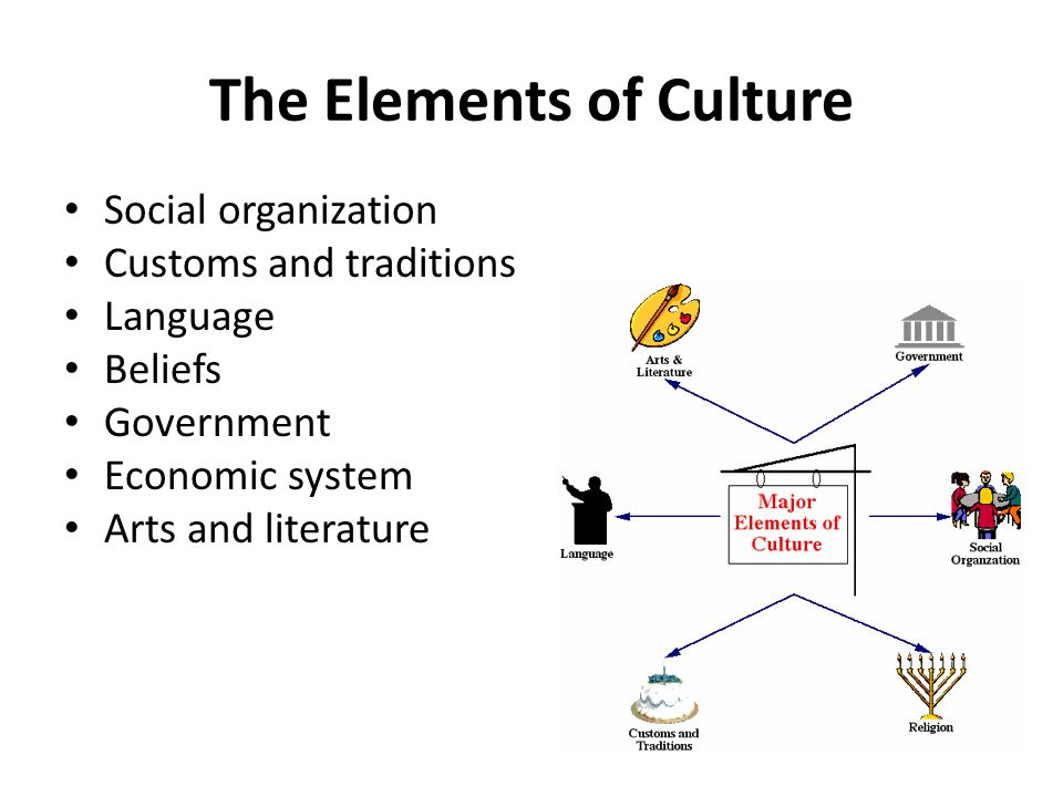 The Elements of Culture Social organization Customs and traditions Language Beliefs Government Economic system Arts and literature