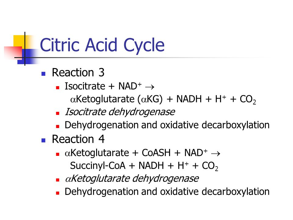 Citric Acid Cycle Reaction 5 Succinyl-CoA + GDP + P i  Succinate +GTP + CoASH Succinyl-CoA synthetase Substrate level phosphorylation via coupling reactions Reaction 6 Succinate + FAD  Fumarate + FADH 2 succinate dehydrogenase Dehydrogenation