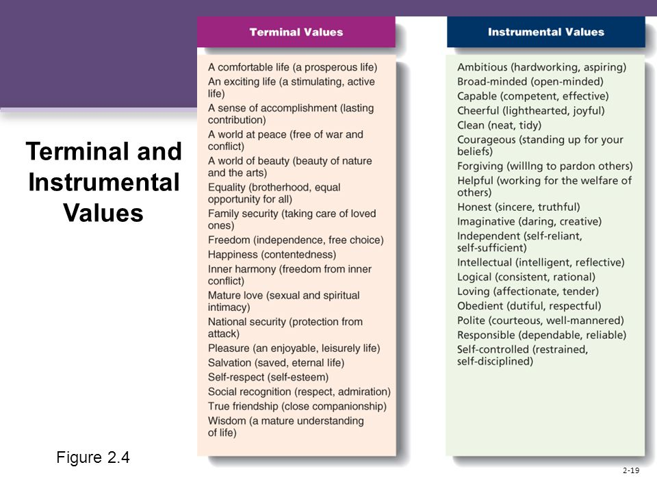 Figure 2.4 Terminal and Instrumental Values 2-19