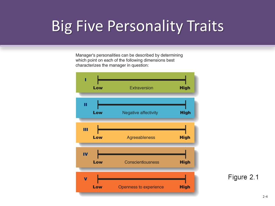 Big Five Personality Traits Figure 2.1 2-4