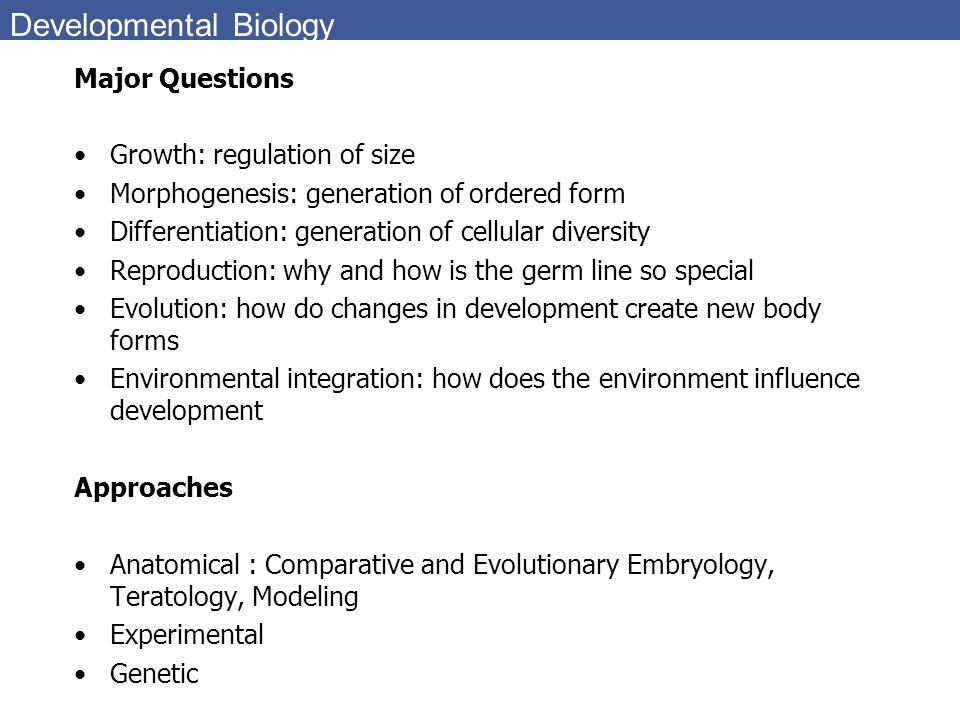 Developmental Biology Major Questions Growth: regulation of size Morphogenesis: generation of ordered form Differentiation: generation of cellular div