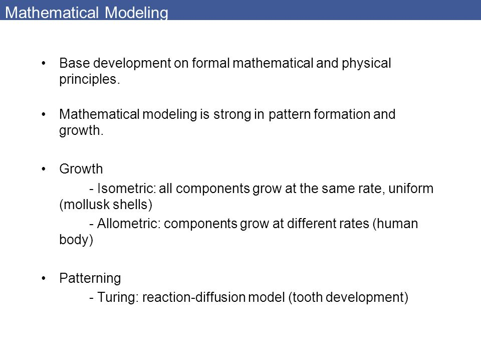 Mathematical Modeling Base development on formal mathematical and physical principles. Mathematical modeling is strong in pattern formation and growth