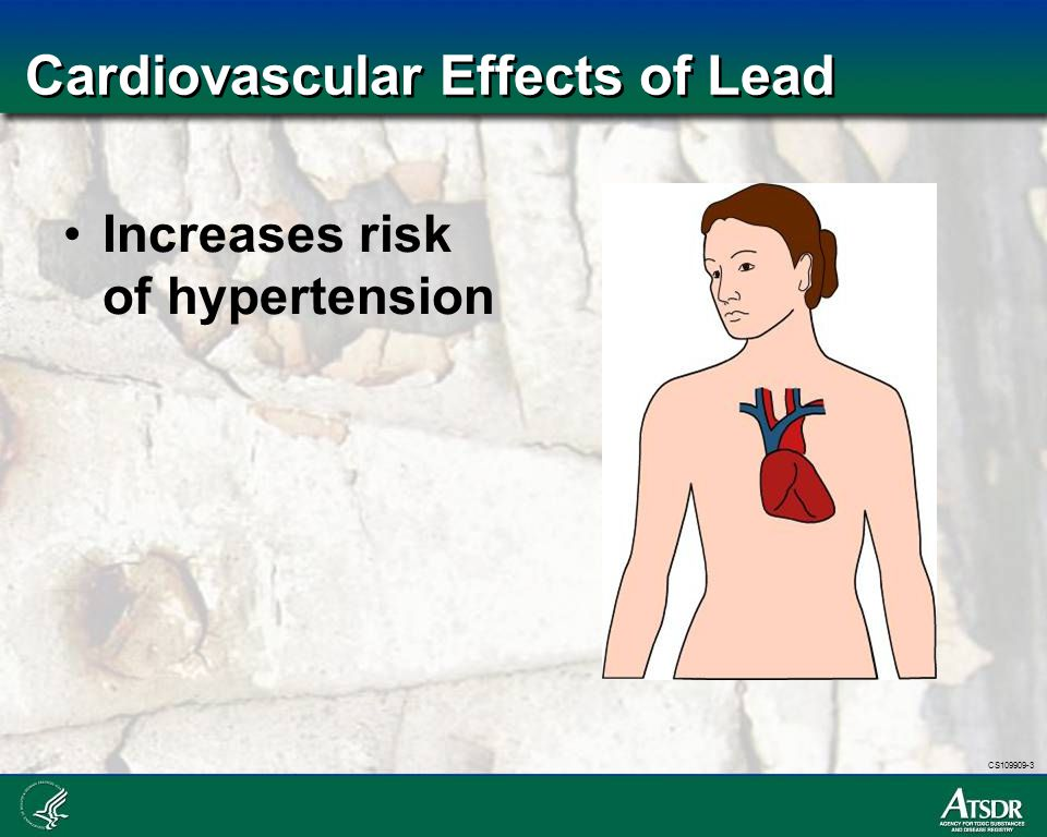 CS109909-3 Cardiovascular Effects of Lead Increases risk of hypertension