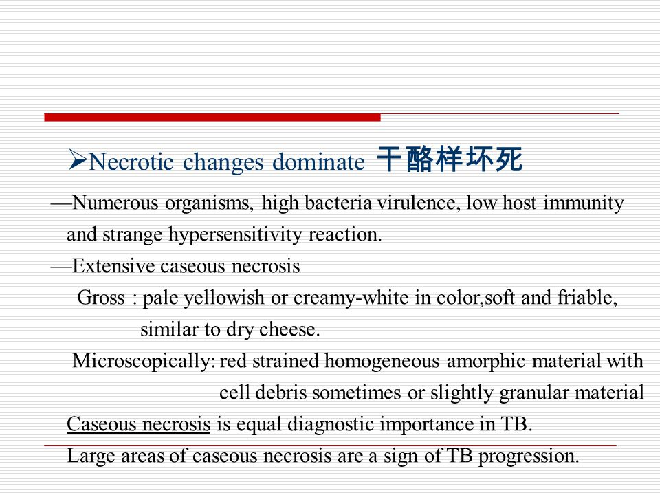  Necrotic changes dominate 干酪样坏死 —Numerous organisms, high bacteria virulence, low host immunity and strange hypersensitivity reaction.