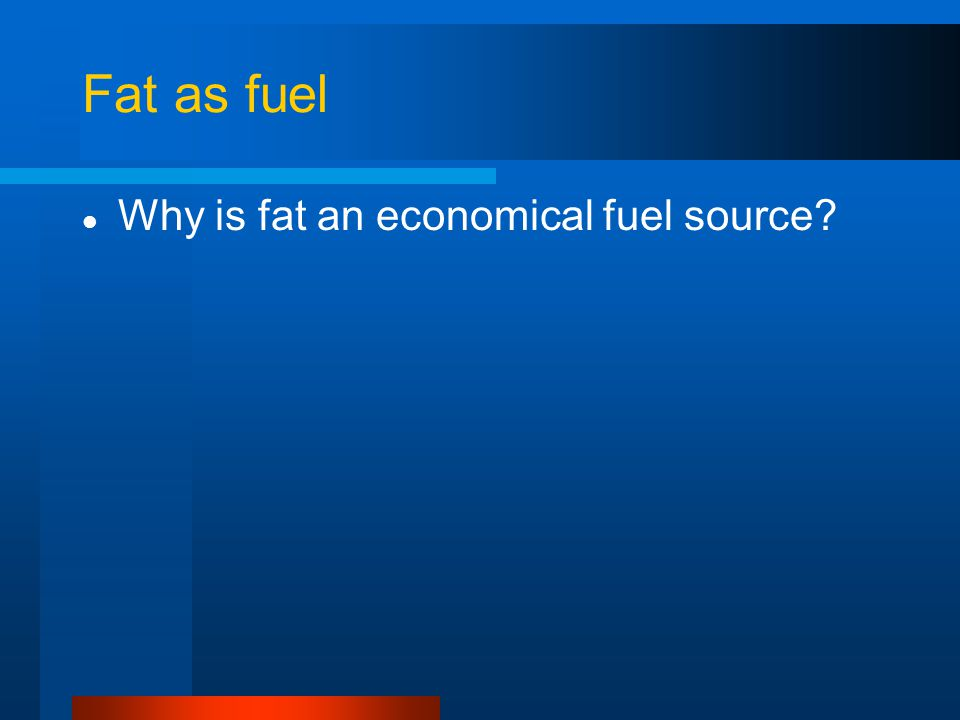 Fat as fuel Why is fat an economical fuel source?