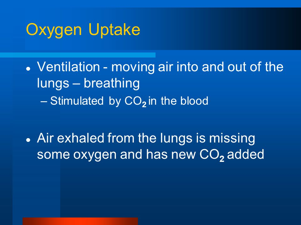 Oxygen Uptake Ventilation - moving air into and out of the lungs – breathing –Stimulated by CO 2 in the blood Air exhaled from the lungs is missing so