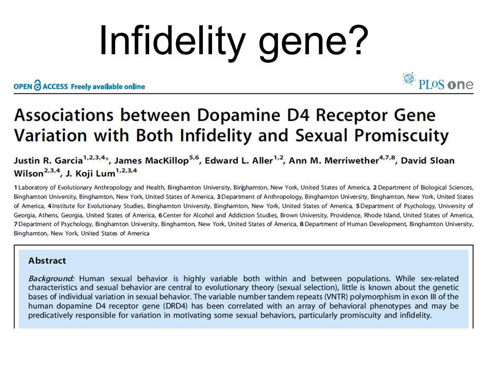 Infidelity gene