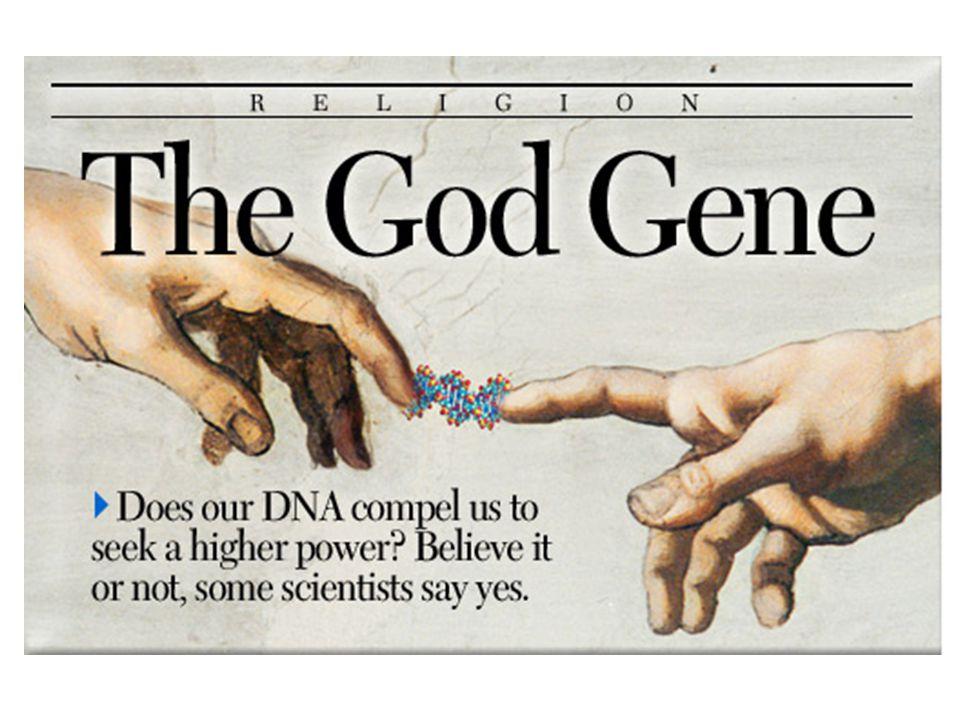 Identifies-meaningless-correlations gene?