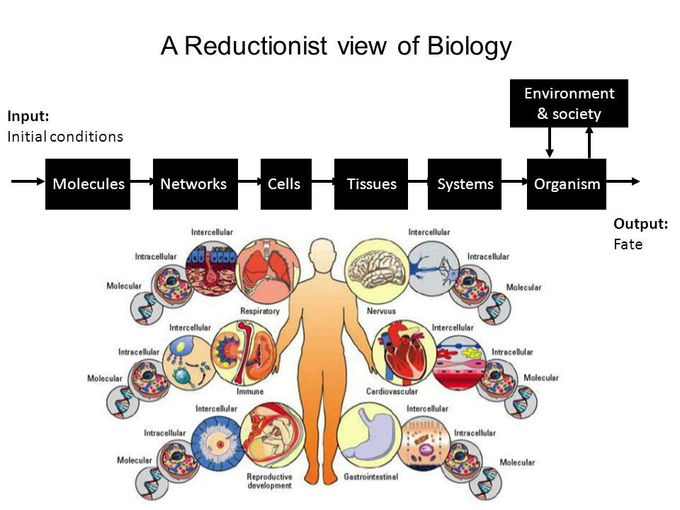 DNA mRNA protein ~20,000 genes ~1,000,000 proteins Diversity of proteins 50x > genes!