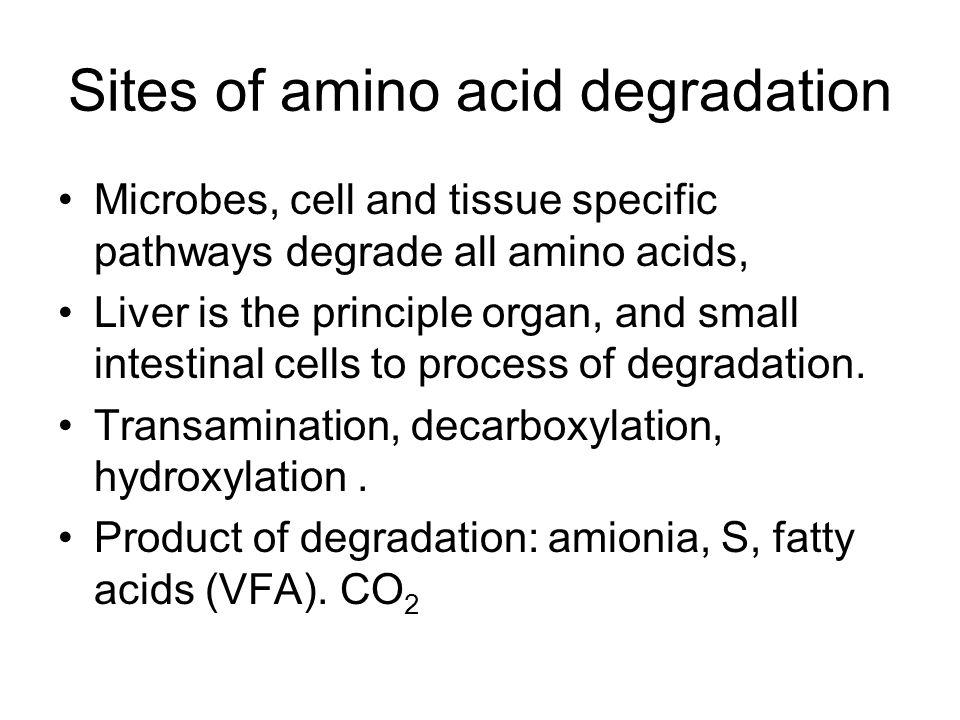 Sites of amino acid degradation Microbes, cell and tissue specific pathways degrade all amino acids, Liver is the principle organ, and small intestina