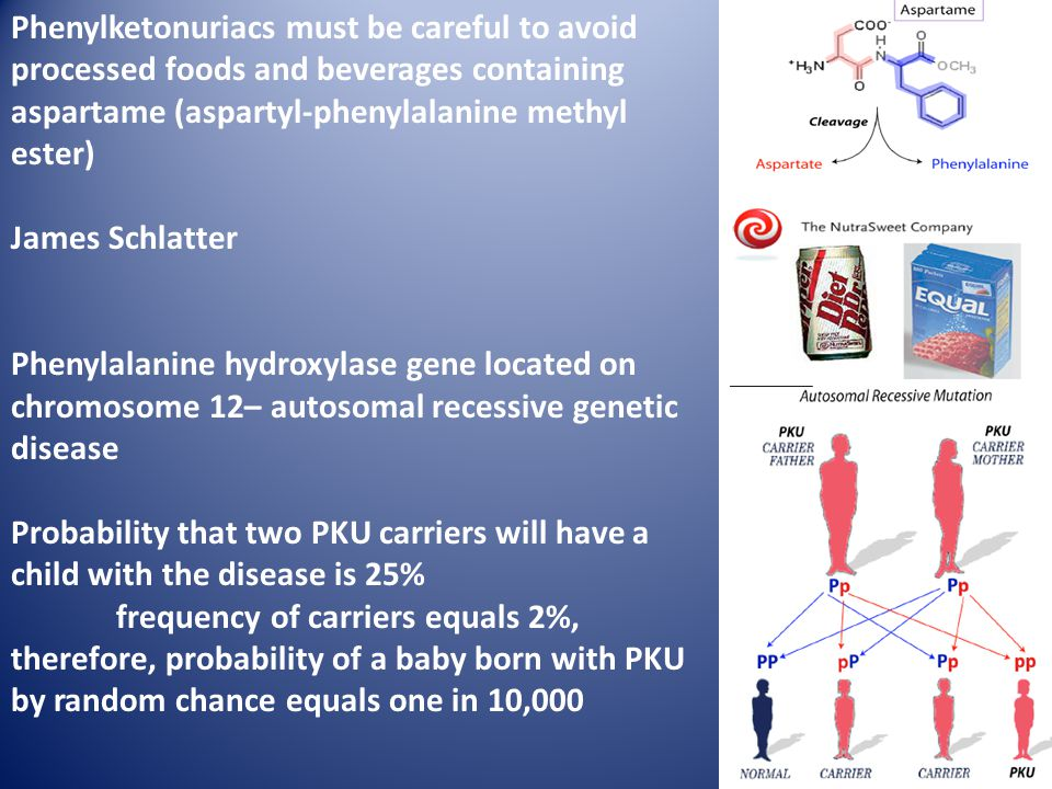 Phenylketonuriacs must be careful to avoid processed foods and beverages containing aspartame (aspartyl-phenylalanine methyl ester) James Schlatter Phenylalanine hydroxylase gene located on chromosome 12– autosomal recessive genetic disease Probability that two PKU carriers will have a child with the disease is 25% frequency of carriers equals 2%, therefore, probability of a baby born with PKU by random chance equals one in 10,000