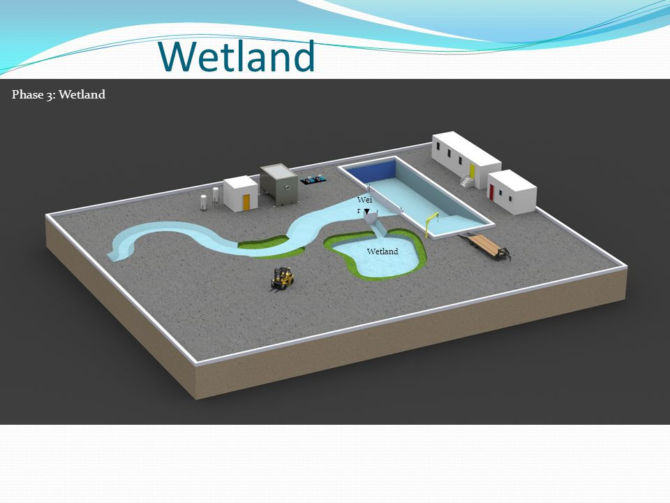 Wetland Wei r Phase 3: Wetland Wetland