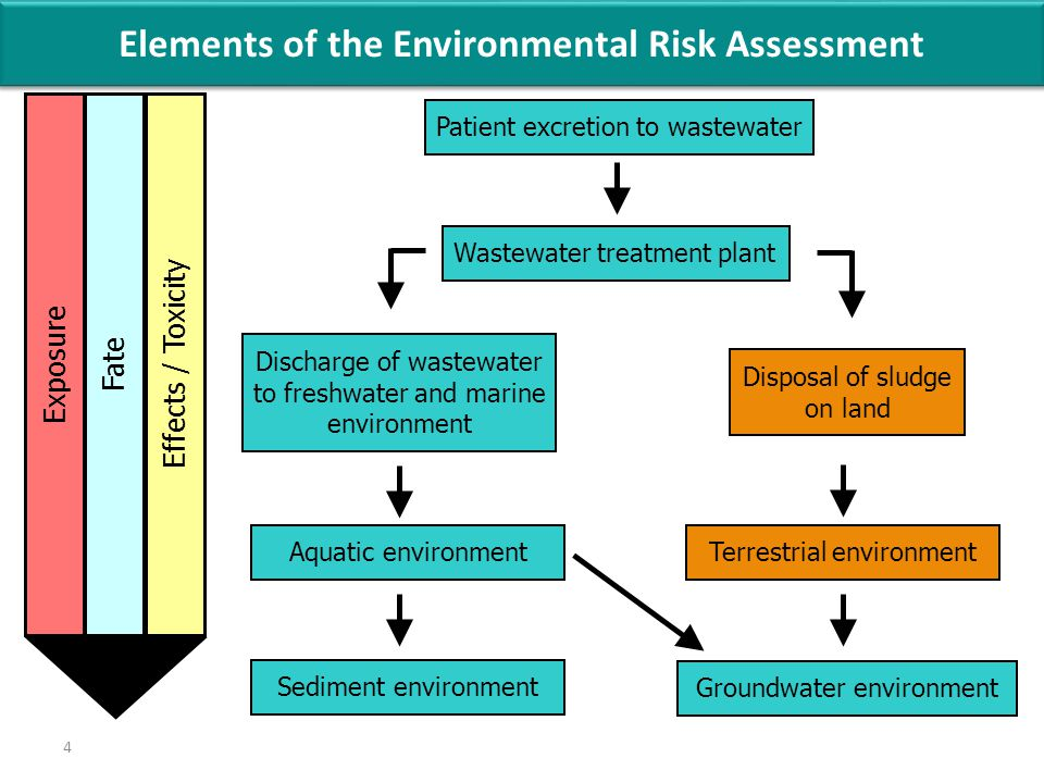 4 Patient excretion to wastewater Wastewater treatment plant Discharge of wastewater to freshwater and marine environment Disposal of sludge on land Aquatic environmentTerrestrial environment Groundwater environment Sediment environment Effects / ToxicityFateExposure Elements of the Environmental Risk Assessment