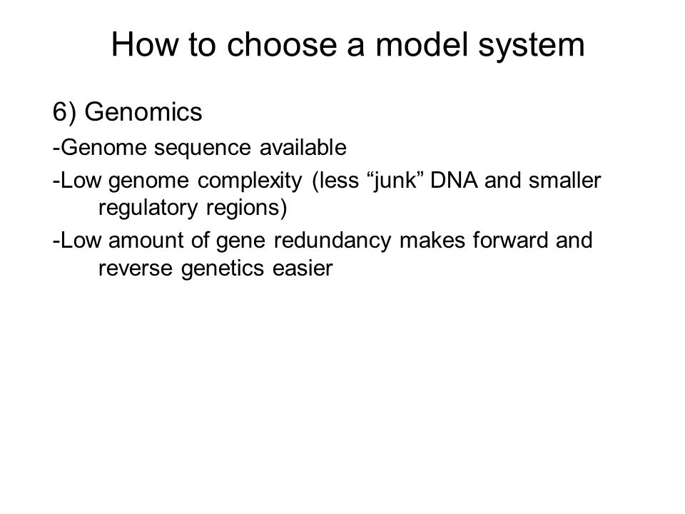 How to choose a model system 6) Genomics -Genome sequence available -Low genome complexity (less junk DNA and smaller regulatory regions) -Low amount of gene redundancy makes forward and reverse genetics easier
