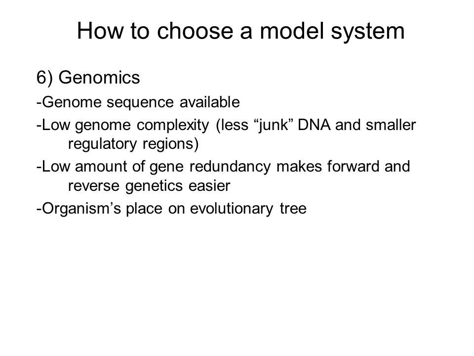 How to choose a model system 6) Genomics -Genome sequence available -Low genome complexity (less junk DNA and smaller regulatory regions) -Low amount of gene redundancy makes forward and reverse genetics easier -Organism's place on evolutionary tree