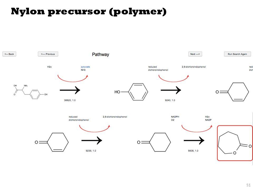 51 Nylon precursor (polymer)