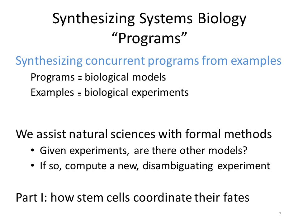 Semantics of the Modeling Language 18 Cell 1Cell 2 Program has cells Non-deterministic outcomes via schedule interleaving let-23 lin-12 sem-5 let-60 mpk-1 lst Cell has proteins All proteins advance synchronously Proteins have discrete state and update functions.