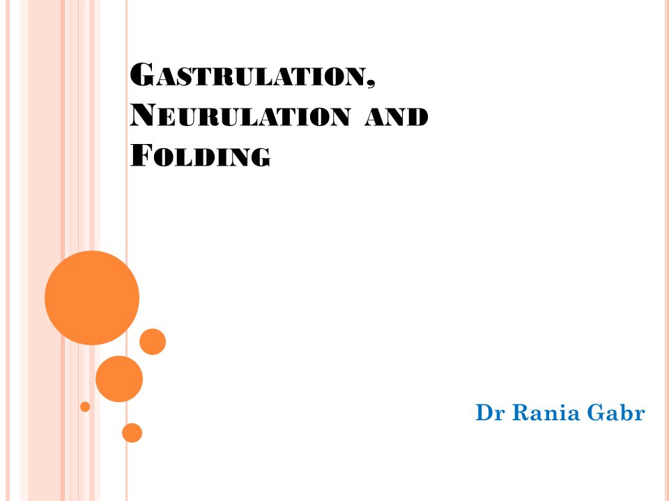 OBJECTIVES By the end of this lecture, the student should be able to: Define Gastrulation Describe the formation of the primitive streak Describe the formation of the intraembryonic mesoderm and the Trilaminar disc Explain the formation, function and fate of the notochord Define Neurulation Describe the formation of the neural plate, groove, fold, crest and canal Understand the process of folding its timing and results