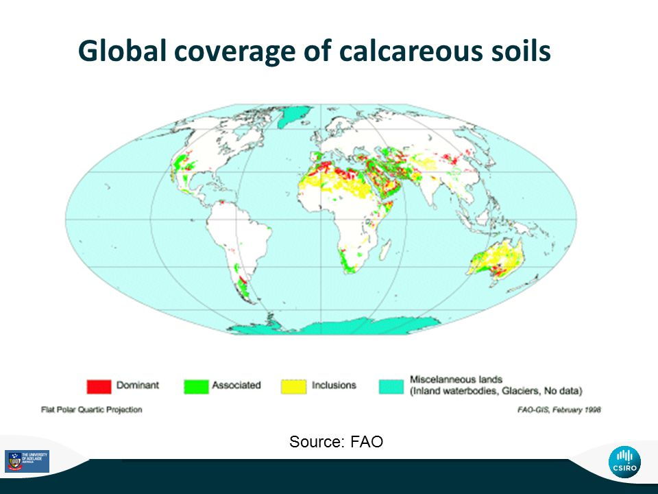 Global coverage of calcareous soils Source: FAO