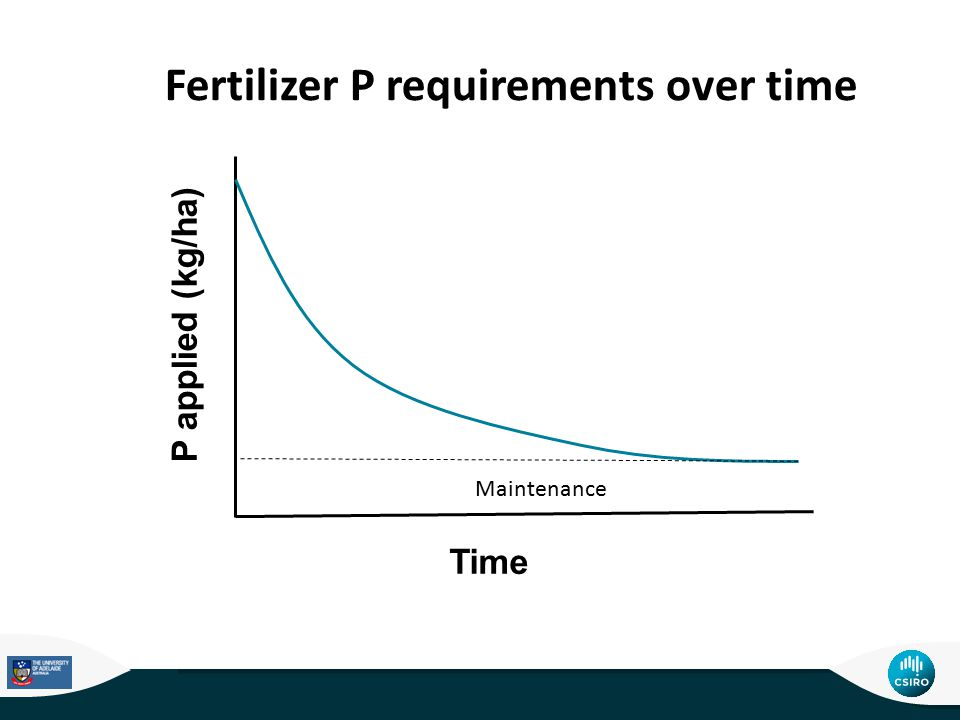P applied (kg/ha) Time Maintenance Fertilizer P requirements over time